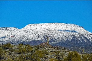 Snow Capped Mountains in Arizona with Cactus