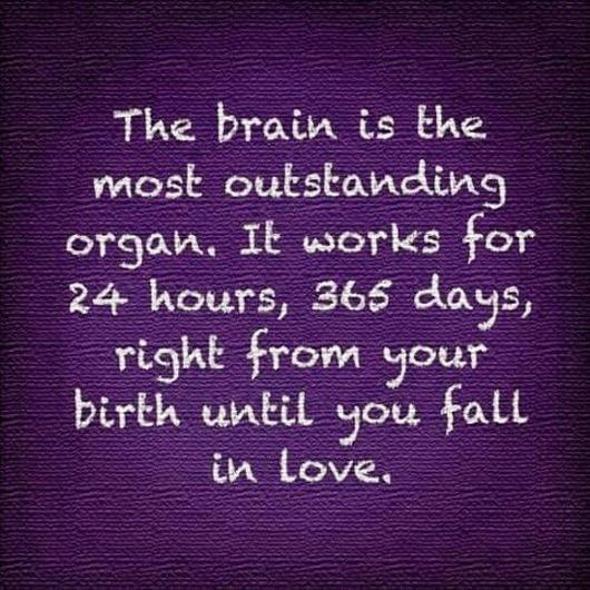 Brain Humor Quote
